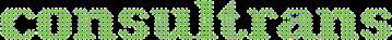 Consultrans Logo